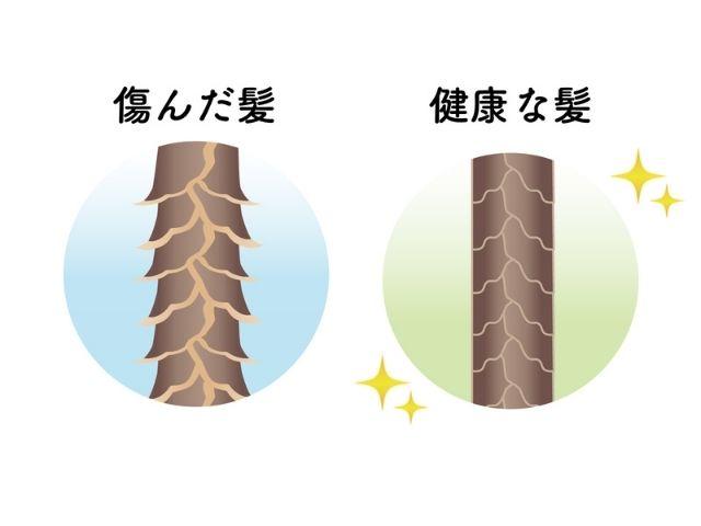 傷んだ髪と健康な髪のキューティクル比較
